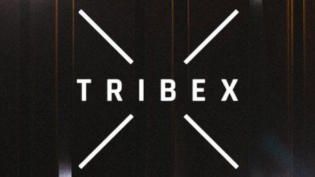 TribeX 06032019