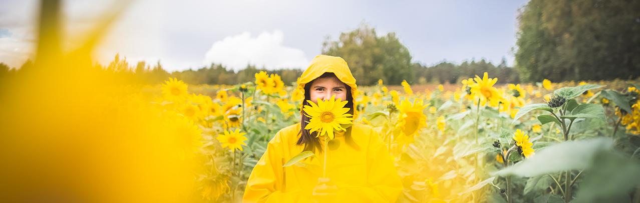 Visit Tampere Sunflowers Varsanpuisto autumn auringonkukkia Laura Vanzo 17