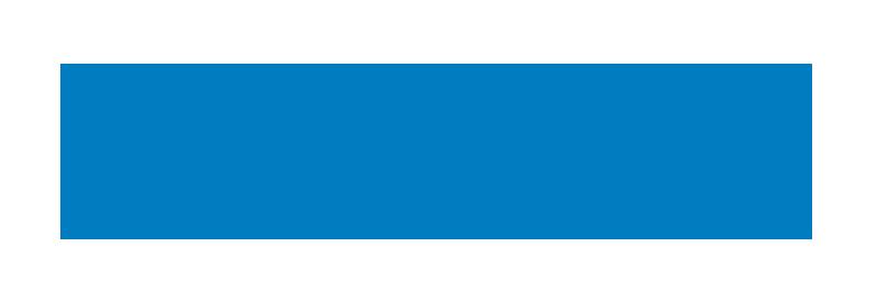 Wapice Logo No Slogan